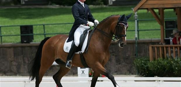 horse_2270265b